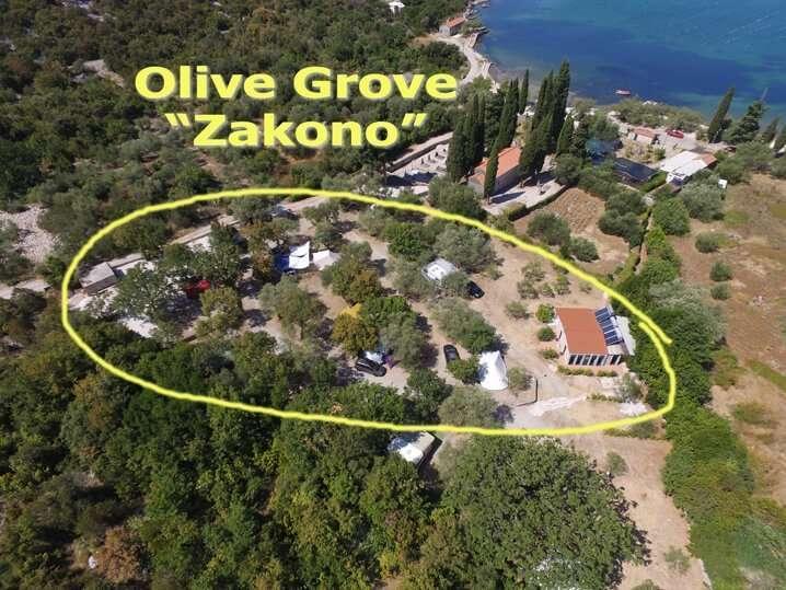 Olive Grove Brijesta Dubrovnik Camping Zakono BirdsEye View